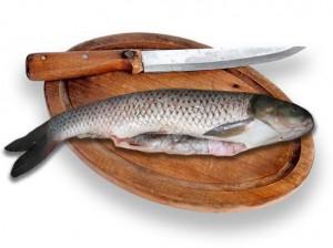 Рыба убийца