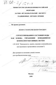 zenin-dissert-1999